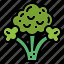 broccoli, food, supermarket, vegan
