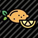 diet, fruit, lemon, organic icon