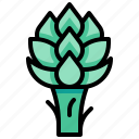 artichoke, harvest, vegetable, vegetarian, veggie icon