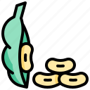 harvest, soybean, vegetable, vegetarian, veggie icon