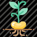 bean, harvest, sprout, vegetable, vegetarian, veggie icon