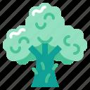 brocoli, harvest, vegetable, vegetarian, veggie icon