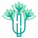 celery, harvest, vegetable, vegetarian, veggie icon