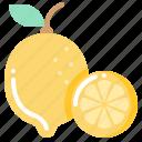 harvest, lime, vegetable, vegetarian, veggie icon
