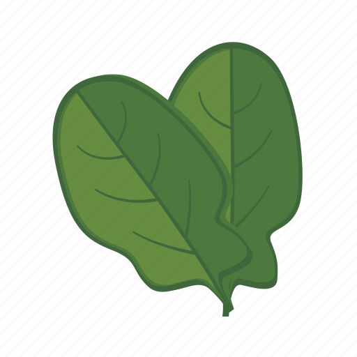 Image result for spinach icon
