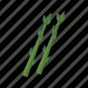 asparagus, food, plant, vegetable, vitamin icon