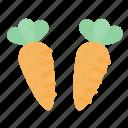 carrot, vegetable, food, healthy