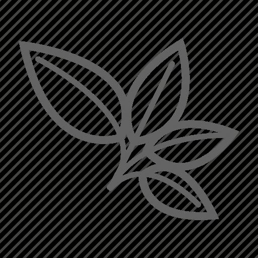 food, garden, herb, kitchen, market, vegetable icon