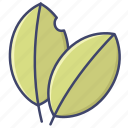 bay, herb, leaf, spice icon