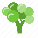 broccoli, cook, food, meal, salad, vegetable, vegetables icon