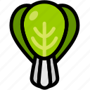 book choy, choy, healthy, organic, vegan, vegetable, vegetarian icon