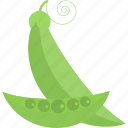 beans, food, peas, vegetables icon