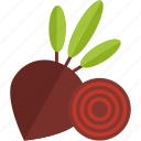 beet, food, red, vegetables icon