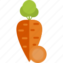 carrot, food, sheet, vegetables icon
