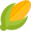 corn, food, sheet, vegetables icon