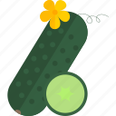 cucumber, food, green, vegetables icon