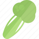 food, garden, greenery, vegetables icon