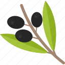 food, olives, sheet, vegetables icon