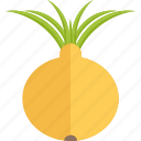 food, garden, onion, vegetables icon
