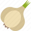 food, onion, seed, vegetables icon