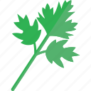 food, greenery, parsley, vegetables icon