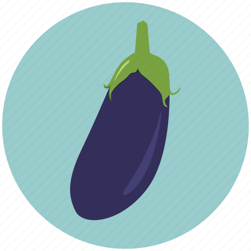 brinjal, food, green food, health, healthcare, kitchen, vegetable icon