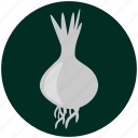 food, garlic, kitchen, onion, restaurant, spices, vegetable icon