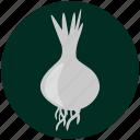 food, garlic, kitchen, onion, restaurant, spices, vegetable icon