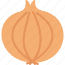 food, onion, vegetable, vegetables icon