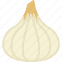 food, garlic, vegetable, vegetables icon