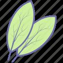 bay, food, herbs, leaf, vegetables icon