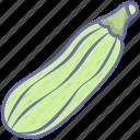 food, healthy, organic, vegetable, vegetables, zucchini