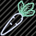 food, parsnip, radish, vegetable, vegetables