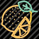 citrus, food, lemon, vegetable icon
