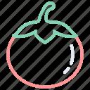 food, tomato, vegetable, vegetables icon