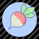 radish, food, vegetables, turnip, vegetable icon