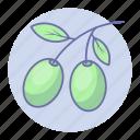 food, olive, vegetable, vegetables icon