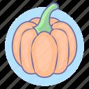 food, pumpkin, vegetable, vegetables icon