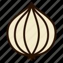 cooking, garlic, onion, seasoning, vegetables
