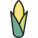cob, corn, maize icon