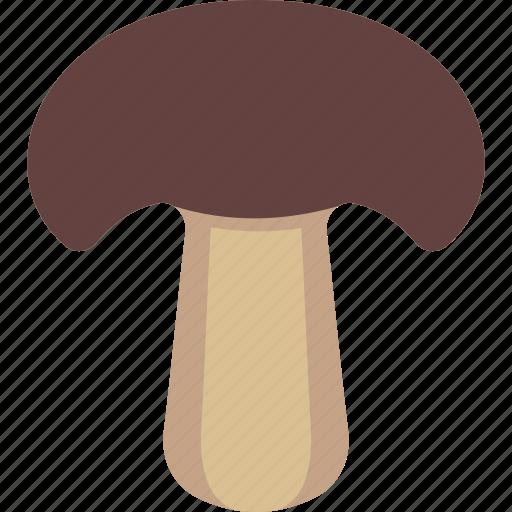 Boletus, fungi, mushroom, toadstool icon - Download on Iconfinder
