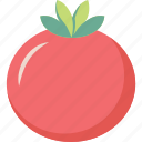 fresh, tomato, tomatoes icon