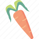 carrot, root, vegetable icon