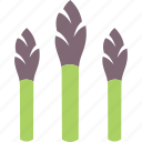 asparagus, sparrowgrass, vegetable icon