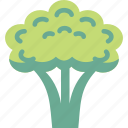 broccoli, brocoli, brocolli icon