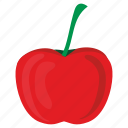 food, tomato, vegetable icon