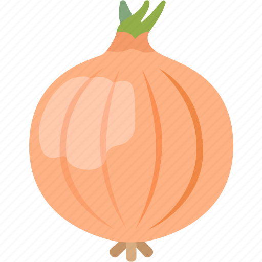 bulb, common, food, onion, vegetable, wild icon