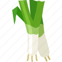 green onion, salad onion, scallions, shallots, spring onion icon