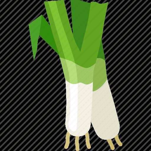 green onion, salad onion, scallions, shallots, spring onion icon