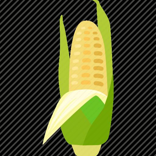 cereal, cob, corn, crop, grain, maize icon